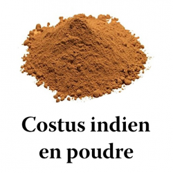 Costus indien en arabe qist al hindi القسط الهندي